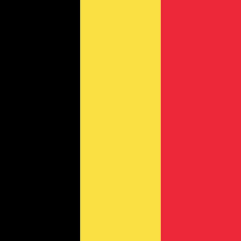 Distributor Belgium Car Mat Cleaner Wash Mat Distributor